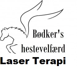 Laser Terapi